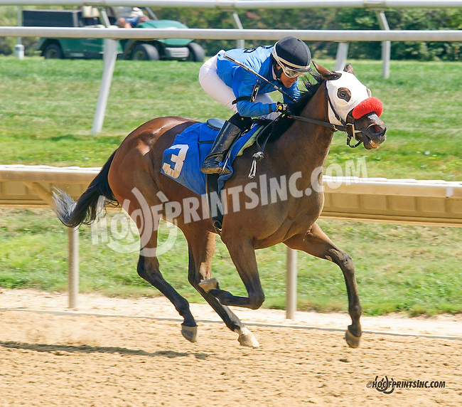 Rich Chocolate winning at Delaware Park on 9/5/15