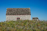 Coastal cottage, Cape Cod, USA