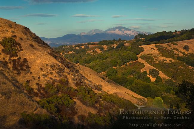 Oak and grass covered hillsides seen below Mount Diablo from along the Rim Trail, Lafayette Reservoir, Lafayette, California