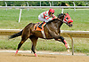 Reckless Runner winning at Delaware Park on 7/28/12
