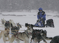 During a heavy snowfall Jason Barron and team run up the bank of the Kuskokwim river to the Nikolai checkpoint on Tuesday afternoon.