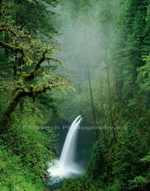 Cascade, Eagle Creek, Hood National Forest