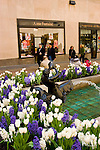 New York City, New York:  Flowers in Rockefeller Center, tulips and hyacinths  .Photo #: ny276-14757  .Photo copyright Lee Foster, www.fostertravel.com, lee@fostertravel.com, 510-549-2202.