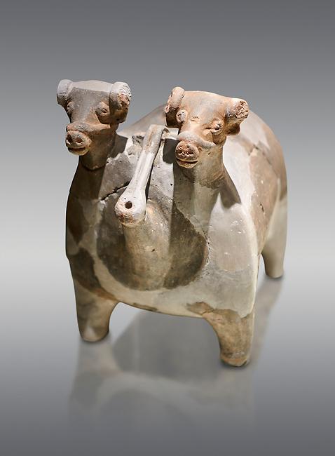 Bronze Age Anatolian terra cotta vtwo headed bull shaped ritual vessel - 19th to 17th century BC - Kültepe Kanesh - Museum of Anatolian Civilisations, Ankara, Turkey. Against a grey background.