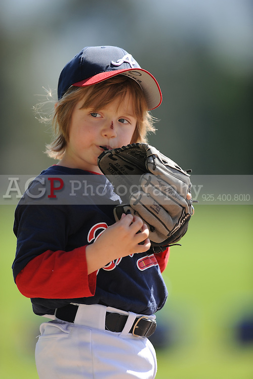 Pleasanton National Little League T-Ball Braves