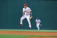 Second baseman Carlos Asuaje (20) of the Greenville Drive takes a hop and a step to get ready for the pitch in a game against the Lexington Legends on Wednesday, June 4, 2014, at Fluor Field at the West End in Greenville, South Carolina. Lexington won, 9-3. (Tom Priddy/Four Seam Images)