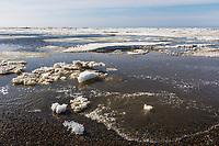 Sea ice along the shore of Utqiagvik (Barrow) Alaska, in Alaska's Arctic.