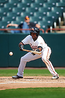 Bowie Baysox left fielder Julio Borbon (24) lays down a bunt during the second game of a doubleheader against the Akron RubberDucks on June 5, 2016 at Prince George's Stadium in Bowie, Maryland.  Bowie defeated Akron 12-7.  (Mike Janes/Four Seam Images)