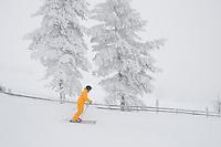 Finland_Skiing at Sport Resort Yllas, Jukka Makkomen,Finland.