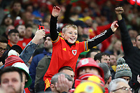 19th November 2019; Cardiff City Stadium, Cardiff, Glamorgan, Wales; European Championships 2020 Qualifiers, Wales versus Hungary; A young Wales fan celebrates the 2-0 win and qualification to Euro 2020 - Editorial Use