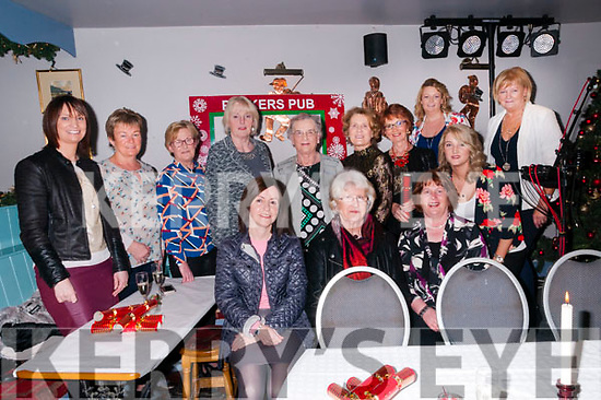 Women's Christmas: Ladies from the Kilflynn area celebrating Women's Christmas at Parker's Bar, Kilflynn on Friday night last.