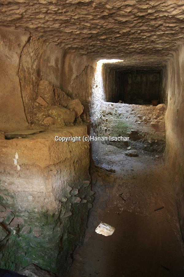 Israel, Jerusalem Mountains, the Cave of John the Baptist by kibbutz Tzuba near Ein Karem.
