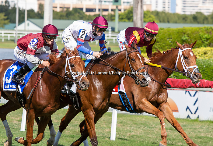 January 25, 2020: #3 Atomic Blonde with jockey Javier Castellano on board (1st turn) wins the South Beach Stakes during the Pegasus World Cup Invitational at Gulfstream Park Race Track in Hallandale Beach, Florida. Liz Lamont/Eclipse Sportswire/CSM