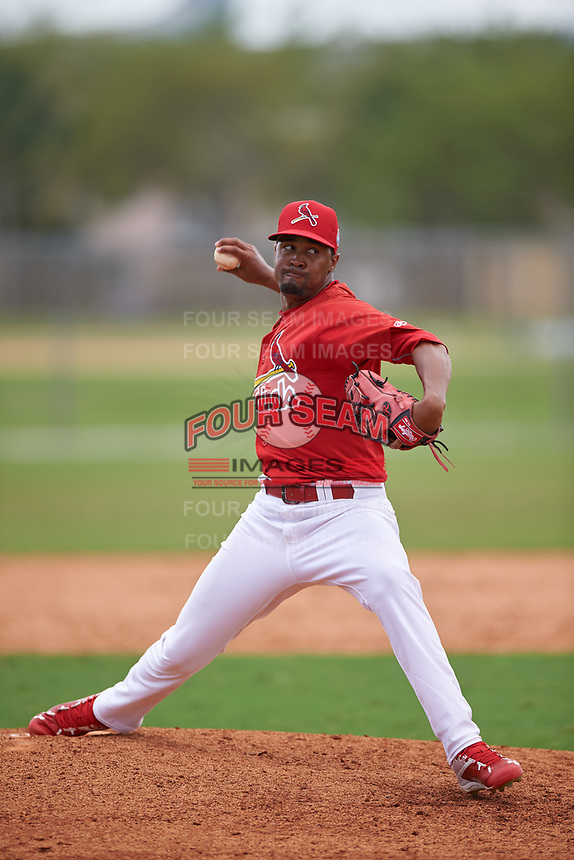 St. Louis Cardinals pitcher Pedro Echemendia (30) during a Minor League Spring Training game against the New York Mets on March 31, 2016 at Roger Dean Sports Complex in Jupiter, Florida.  (Mike Janes/Four Seam Images)