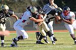 Palos Verdes, CA 11/12/10 - Brock Dale (Peninsula #7), Patrick Scoggins (Palos Verdes #53) and Andrew Bucklin (Palos Verdes #72) in action during the Palos Verdes - Peninsula varsity football game at Peninsula High School.