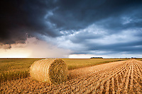Hay Bale in Golden Wheat Field Under Dark Clouds in Pratt, KS