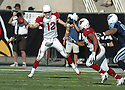 Josh McNown, of the Arizona Cardinals, in action  during thier game against the Tennessee Titans on October 23, 2005...Titans win 10-0...Nils Nilson / SportPics
