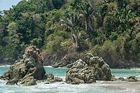Manuel Antonio Bay