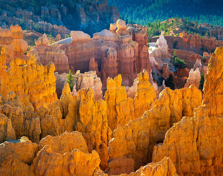 "Spires and rock formations along the Navajo Trail. Bryce Canyon National Park, 35,835 acres (14,502 ha), est. 9/15/1928. Natural amphitheater created by erosion along eastern side of Paunsaugunt Plateau. Distinctive geological structures called ""hoodoos"" formed by wind, water, and ice erosion of the river and lake bed sedimentary rocks. Garfield and Kane County, UT."