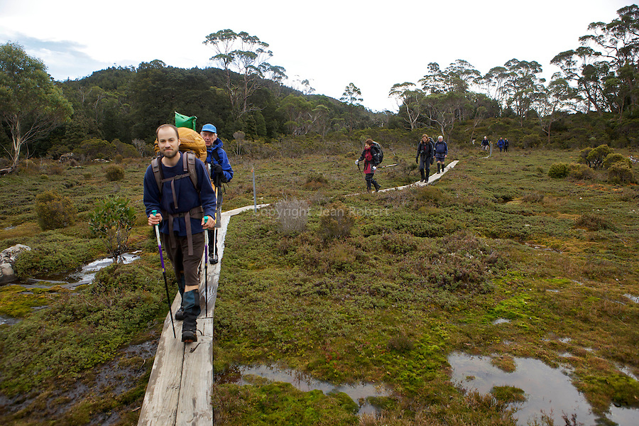 Typical Overland track landscape with walkers on duck boards to protect the humid ecosystem of button grass.