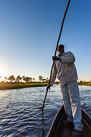 Man poles through the waterway of the Okavango Delta, Botswana, Africa