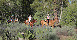 Riders enjoy a horseback ride near Willow Creek, Thursday, July 21, 2011, in Hope Valley, Ca..Photo by Cathleen Allison