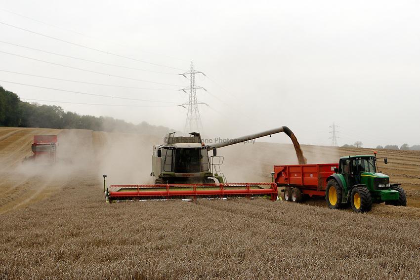 Photo: Richard Lane/Richard Lane Photography. Grain harvest near Little Missenden, Buckinghamshire. A Class combine harvester cutting winter wheat unloads into a tractor and trailer under power lines. 16/09/2008.