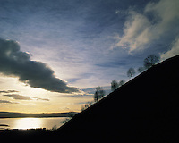 Silhouette of trees on the ridge of Conic Hill, Loch Lomond behind under a dramatic winter sky, Strathclyde region, Scotlan