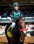 OCT 05: Stubbins with Joel Rosario up wins the Woodford  Presented y Keeneland Select at Keeneland Racecourse, Kentucky on October 05, 2019. Evers/Eclipse Sportswire/CSM