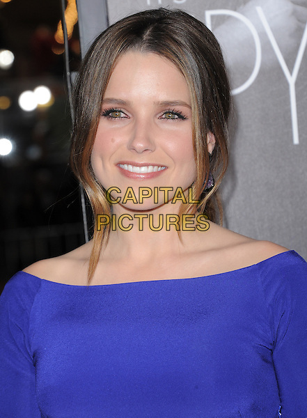 Sophia Bush.The L.A Premiere of 'This Means War' held at The Grauman's Chinese Theatre in Hollywood, California, USA..February 8th, 2012.headshot portrait purple  .CAP/RKE/DVS.©DVS/RockinExposures/Capital Pictures.