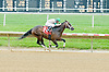 Always Smiling winning at Delaware Park on 5/14/12