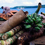 Banana plants and bananas on wooden pier waiting to be transported and transplanted to another island. Nuku'lofa, Tonga Islands,South Pacific.