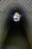 Foot Path Tunnel Under U.S. 101, Barnes Point, Olympic National Park, Washington, US