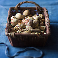 Europe,France, Normandie, Basse-Normandie, 50, Manche ,Pirou : Praires  // Europe, France, Normandy ,Basse-Normandie, Pirou: Warty venus, clams - Stylisme : Valérie LHOMME