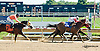 Yukon Special winning at Delaware Park on 9/19/13