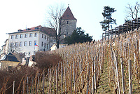Vineyard at Prague Castle , Prague, Czech Republic on February 28th to March 3rd 2018<br /> CAP/ROS<br /> &copy;ROS/Capital Pictures