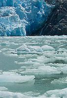 Ice floats beneath face of South Sawyer Glacier-Tracy Arm Fjord, Alaska, USA