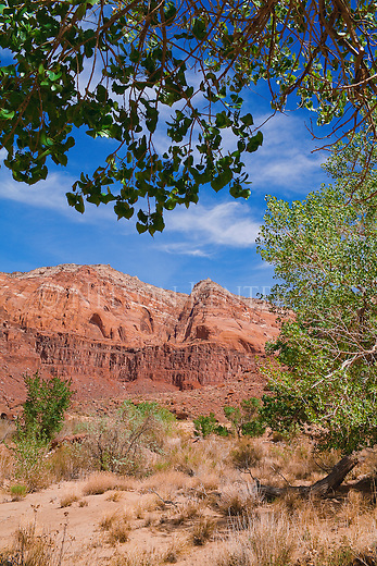 Sandstone cliffs and ridges along the Paria River Canyon in Arizona