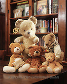 Interlitho, Alberto, CUTE ANIMALS, teddies, photos, 5 teddies, books(KL16011,#AC#)