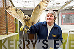 Billy Holmes a volunteer with Kerry SPCA with an Owl which was rescued last week.