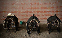 BOGOTÁ -COLOMBIA. 13-10-2018: Sillas de montar son vistas durante el 22 encuentro Mundial de Coleo en Villavicencio, Colombia realizado entre el 11 y el 15 de octubre de 2018. / Horse saddles are seen during the 22 version of the World  Meeting of Coleo that takes place in Villavicencio, Colombia between 11 to 15 of October, 2018. Photo: VizzorImage / Gabriel Aponte / Staff