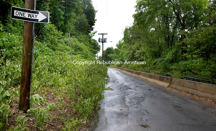 WATERBURY CT. 01 June 2015-060115SV04-Trash is piling up on the untraveled portion of Waterville Street in Waterbury Monday. Waterville Street is a one-way road created by Hychko Co. and has become a dump zone. <br /> Steven Valenti Republican-American