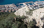 The Charles V Wall view over docks and shipyard warehouses in Gibraltar, British territory in southern Europe