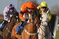 Horse Racing 2012-01
