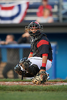 Batavia Muckdogs catcher Bryan De La Rosa (15) looks to the dugout during a game against the West Virginia Black Bears on June 24, 2017 at Dwyer Stadium in Batavia, New York.  The game was suspended in the bottom of the third inning and completed on June 25th with West Virginia defeating Batavia 6-4.  (Mike Janes/Four Seam Images)