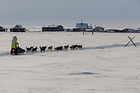 Monica Zappa on the trail just a few miles from the finish line along the Bering Sea coast passes summer fish shacks as she nears Nome on Saturday March 15 during the 2014 Iditarod Sled Dog Race.<br /> <br /> PHOTO (c) BY JEFF SCHULTZ/IditarodPhotos.com -- REPRODUCTION PROHIBITED WITHOUT PERMISSION