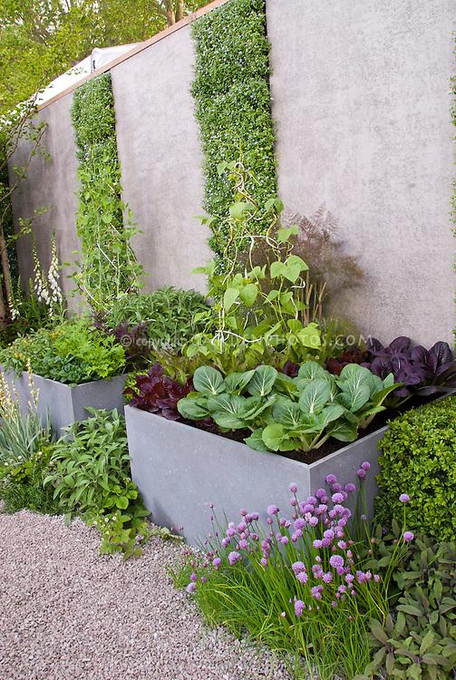 Elevated Vegetable Garden Plant Amp Flower Stock