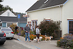 Mendocino California is a very dog friendly town.