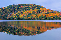 Autumn  colors reflected in Lac Wapizagonke n the Laurentian Mountains. Great Lakes - St.  Lawrence Forest Region.<br />