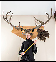 Elk'n'Safety fears move massive antlers.